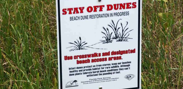 Stay Off Dunes Signs