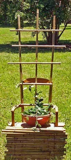 Repurposed Chair Trellis