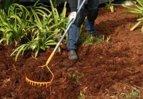 Ground Hog Circular Rake