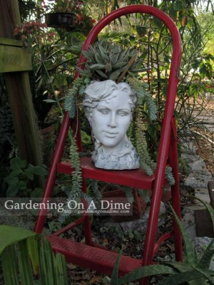 A bit of glamour in the garden?
