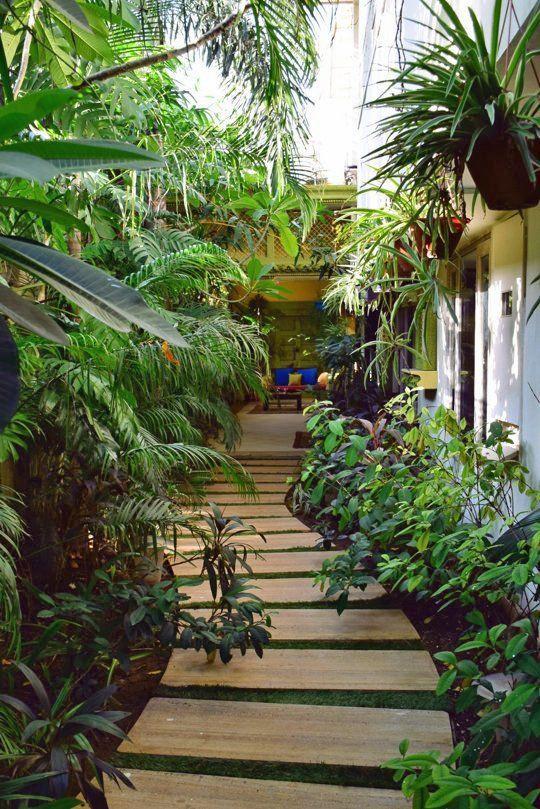Wooden-Walkway