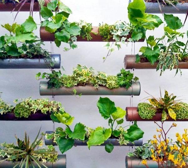 urban-gardens-pipe-garden