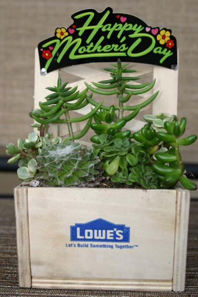 Lowe's Build and Grow Workshop 2