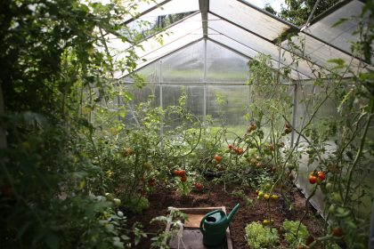 Winter-Gardening-Greenhouse
