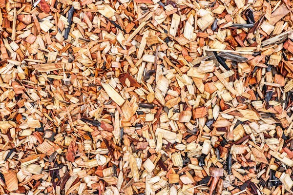 Wood chips on the ground.
