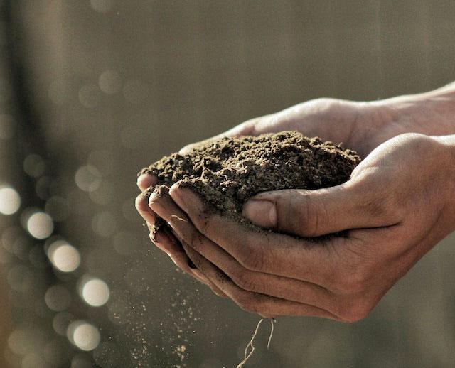 Hands-full-of-soil