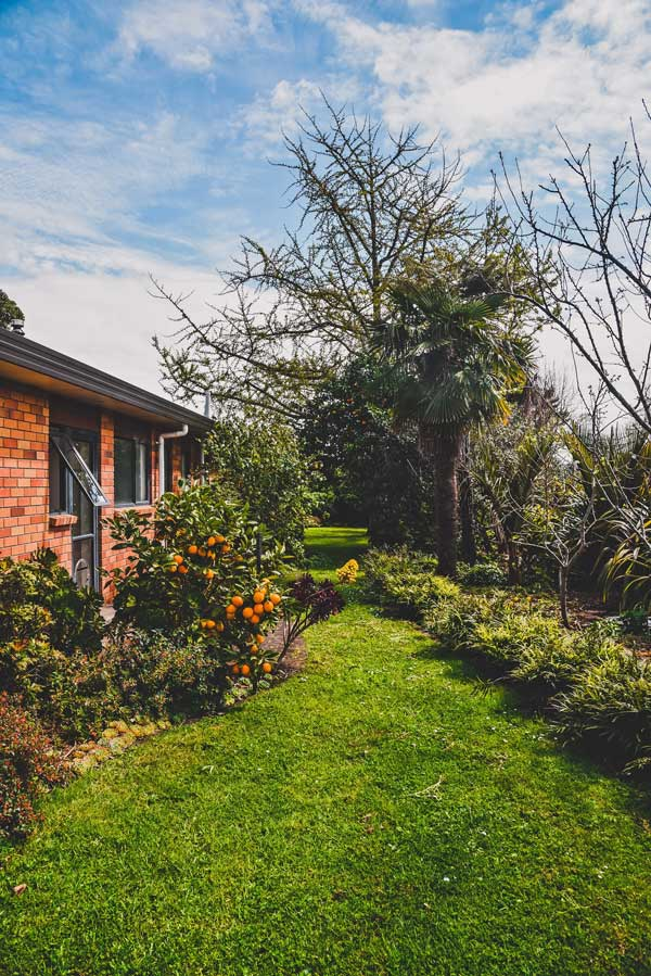 Trees and plants in the garden vital to consider when buying a house with a garden