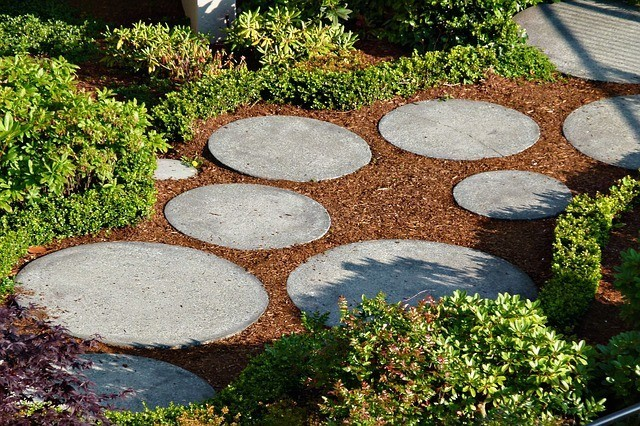 A pathway through a low-maintenance garden.