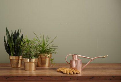 brass colored garden pots
