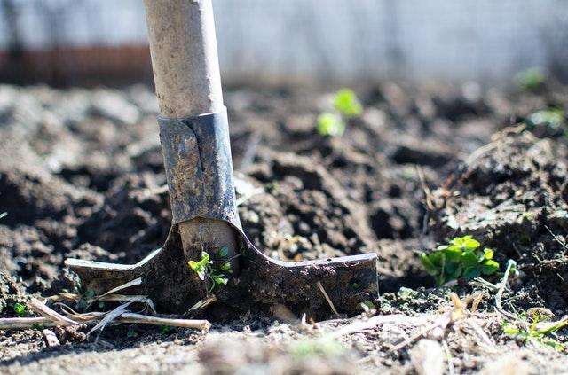 a shovel in the ground in a garden