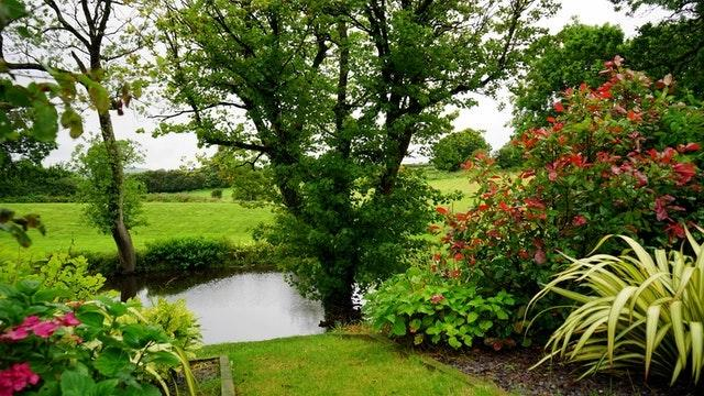 A beautiful green garden with a pond
