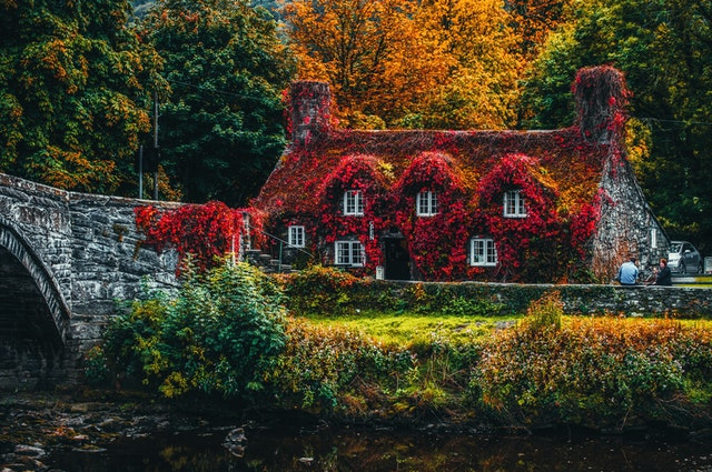 A house with a garden in fall